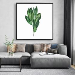 Framed 48 x 48 - Bay leaves bundle