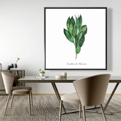 Framed 48 x 48 -  bay leaves bundle - fr