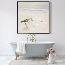 Framed 48 x 48 - Semipalmated sandpiper on the beach