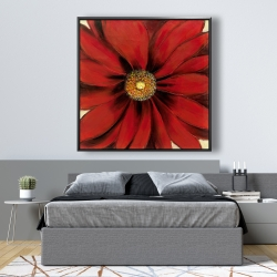 Framed 48 x 48 - Red daisy