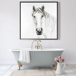 Framed 48 x 48 - Solitary white horse