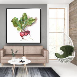 Framed 48 x 48 - Watercolor radish