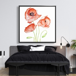 Framed 48 x 48 - Watercolor poppies