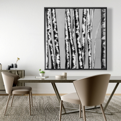 Framed 48 x 48 - Birches intersecting