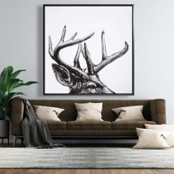 Framed 48 x 48 - Roe deer plume