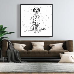 Framed 48 x 48 - Dalmatian dog