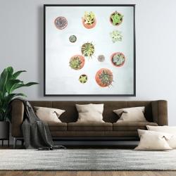 Framed 48 x 48 - Cactus plants