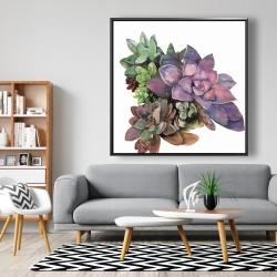 Framed 48 x 48 - Succulent plant