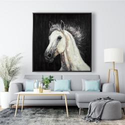 Framed 48 x 48 - White star horse
