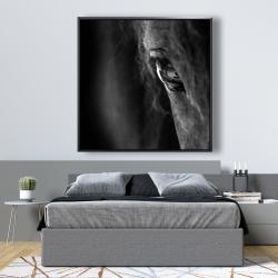 Framed 48 x 48 - Black horse