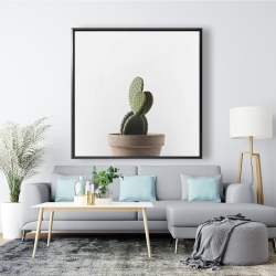 Framed 48 x 48 - Potted cactus