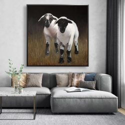 Framed 48 x 48 - Two lambs