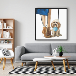 Framed 48 x 48 - Fashionable cavoodle dog