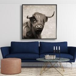 Framed 48 x 48 - Highland cattle sepia