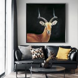 Framed 48 x 48 - Antelope