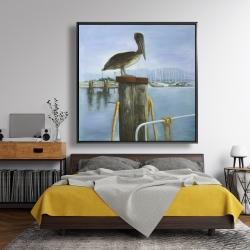 Framed 48 x 48 - Pelican