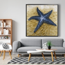 Framed 48 x 48 - Beautiful starfish