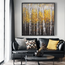 Framed 48 x 48 - Sunny birch trees