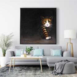Framed 48 x 48 - Discreet cat