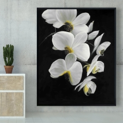 Framed 48 x 60 - Beautiful orchids