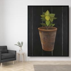 Framed 48 x 60 - Plant of bay leaves