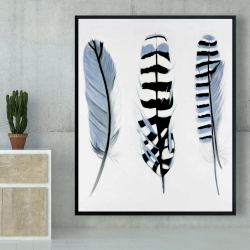 Framed 48 x 60 - Delicate feathers