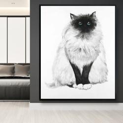 Framed 48 x 60 - Blue eyes fluffy siamese cat