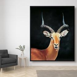 Framed 48 x 60 - Antelope