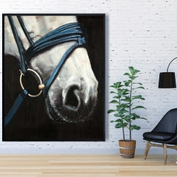 Framed 48 x 60 - Horse with harness