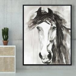 Framed 48 x 60 - Beautiful wild horse