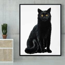 Framed 48 x 60 - Black cat