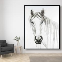 Framed 48 x 60 - Solitary white horse