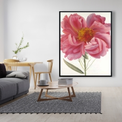 Framed 48 x 60 - Pink peony flower