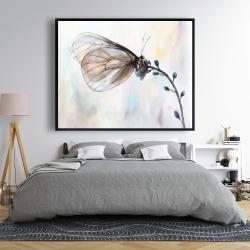 Framed 48 x 60 - Butterfly on blue flowers