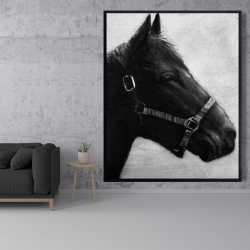Framed 48 x 60 - Gallopin the horse