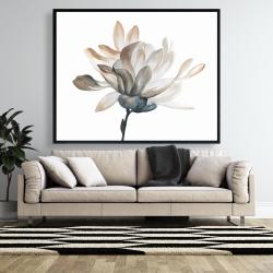 Framed 48 x 60 - Softness