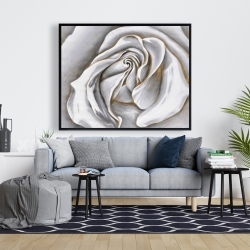 Framed 48 x 60 - White rose delicate