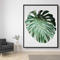 Framed 48 x 60 - Monstera leaf