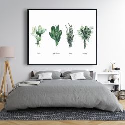 Framed 48 x 60 - Fine herbs