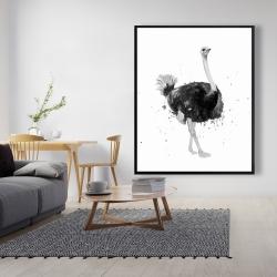 Framed 48 x 60 - Proud ostrich