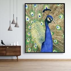 Framed 48 x 60 - Peacock