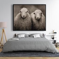 Framed 48 x 60 - Sheep sepia