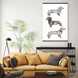 Magnetic 20 x 30 - Dachshund dogs