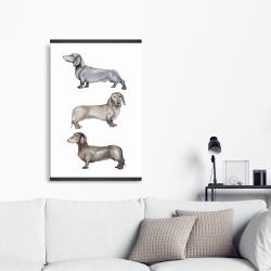 Magnetic 20 x 30 - Small dachshund dog
