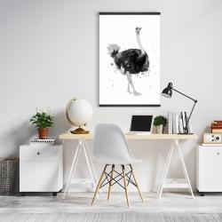 Magnetic 20 x 30 - Proud ostrich