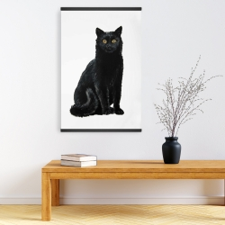 Magnetic 20 x 30 - Black cat