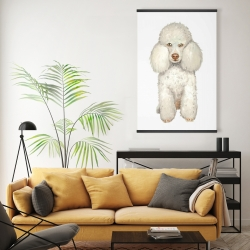 Magnetic 20 x 30 - French poodle