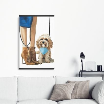 Fashionable cavoodle dog