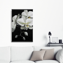 Magnetic 20 x 30 - White orchids