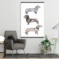 Magnetic 28 x 42 - Dachshund dogs